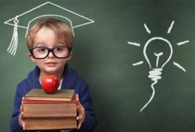 杭州金色雨林儿童数学思维培训课