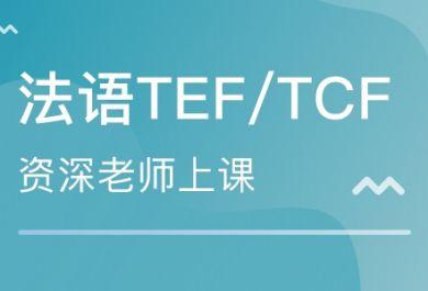 成都东佳法语TEF/TCF考试培训班
