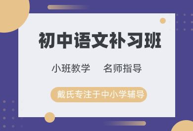成都初中语文补习班