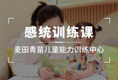 成都麦田青苗儿童感统培训班