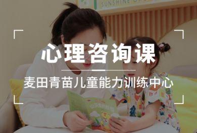 成都麦田青苗儿童心理学培训班